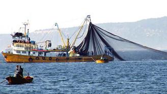 Balıkçılar yüzde 80'lik düşüşün araştırılmasını istiyor