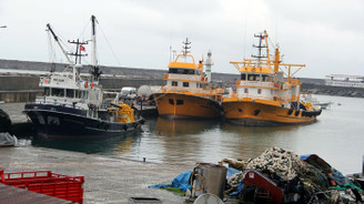 Balık kalmadı, tekneler av sezonu bitmeden limanlara döndü