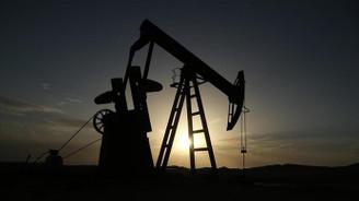 Petrol fiyatları 1,5 ayın en düşüğünde