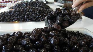 Marmarabirlik zeytin alımında rekor kıracak
