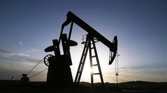 Petrolde düşüşü tetikleyecek 4 faktör!