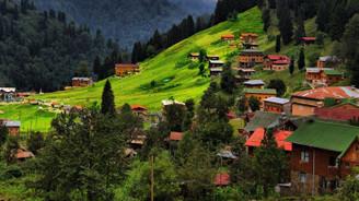 Trabzon için San Francisco önerisi