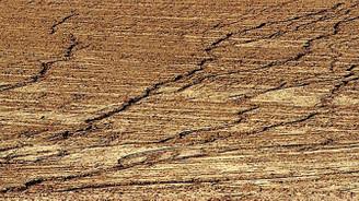 Erozyon ve çölleşmeye karşı 4 eylem planı