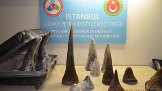 Atatürk Havalimanı'nda gergedan boynuzu operasyonu