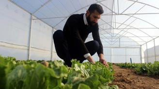 Genç Çiftçi Projesi'yle memleketine döndü