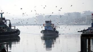 Küçük tekne balıkçıları 'karides' peşinde