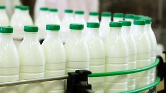 Toplanan süt miktarı ocakta arttı