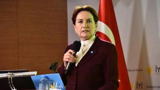 Akşener 'FETÖ ve DEAŞ ile mücadele eylem planı'nı açıkladı