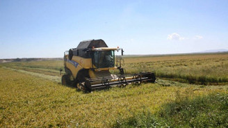 Tarım ÜFE şubatta arttı