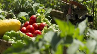 Tarım ve hayvansal ürünlerin fiyatları Türkiye'de belirlenecek