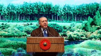 Ormana sahip çıkmak, vatana sahip çıkmaktır