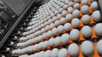 Yumurtacılar yeni pazarlara açılmak istiyor