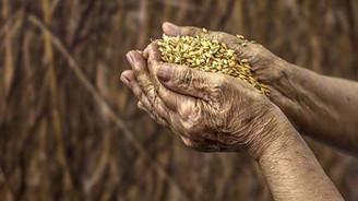 Gıda, tarım ve hayvancılıkta dünyanın sayılı ülkeleri arasındayız