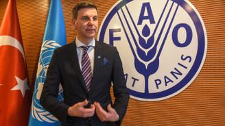FAO: Gerekirse 300 koyun projesini destekleriz