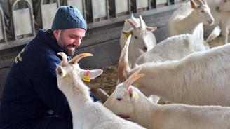 Koyun ve keçide milli seferberlik çağrısı