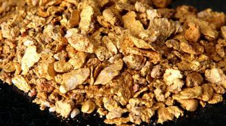 Dünyadan 8 trilyon dolarlık altın hediyesi