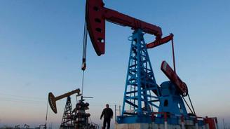 Yeni Zelanda'dan petrol kararı