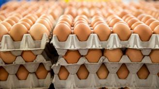 Tavuk yumurtası üretimi şubatta yüzde 8.4 azaldı