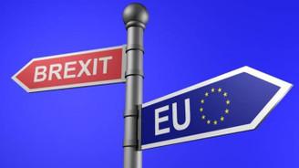 İngiltere'de Brexit anlaşması için referandum kampanyası