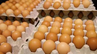 Yumurtada yeni uygulama bugün başlıyor