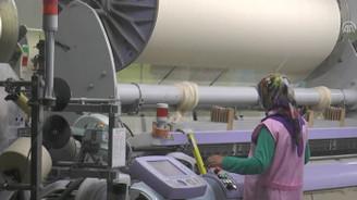 Organik bebek tekstilinde ihracat başarısı