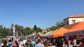 Didim'de cesur bir adım: Vegan Festivali