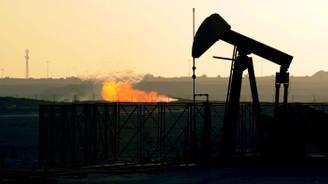Petrol ithalatında artış eğilimi devam ediyor