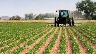 Fakıbaba: Tarımda ihracat 17, ithalat 13 milyar dolar