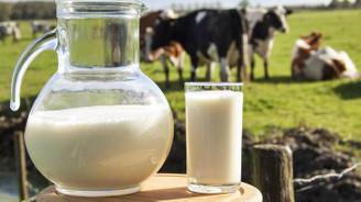 Çiğ süt prim destekleri artırıldı