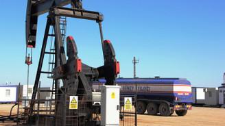 Güney Yıldızı, iki ilde petrol aramak için başvurdu