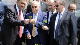 Türkiye'de ÇAYKUR'un çayı kullanılmalı