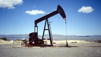 Turcas'ın Denizli'de petrol aramasına izin