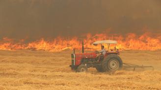 Denizli'de tarla yangını ormana sıçradı