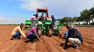 Somalili mühendisler modern tarımı Türkiye'de öğreniyor