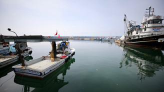 Karadeniz'de kıyı avcılığı
