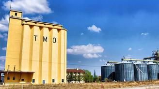 TMO, yurt dışından yemlik mısır alacak