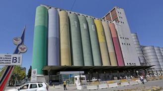 TMO ihaleyle yaklaşık 140 bin ton mısır aldı