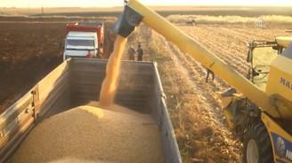 Fakıbaba: Tarım desteklenmeye devam edecek