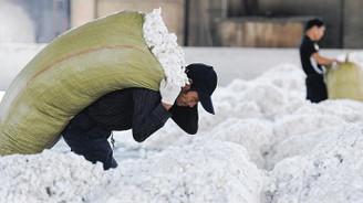 Çin pamuk ithalatını 3'e katlamaya hazırlanıyor