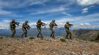Ağrı Dağı'nda 5 terörist etkisiz hale getirildi