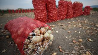 Haziranda en fazla soğanın fiyatı arttı