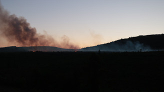 İstanbul'daki Aydos Ormanı'nda yangın