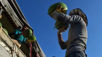 Marmara'nın karpuzcusu 90 bin tonluk rekolte bekliyor