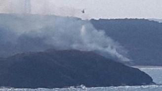 Beykoz'da orman yangını söndürüldü