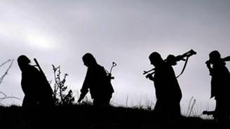 PKK'ya Faraşin Yaylası'nda darbe