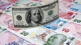 Türk Lirası'nın haftalık kaybı yüzde 6'yı aştı