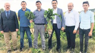 Tarım Bakanlığı, İGSAŞ'ın projesini millileştirecek