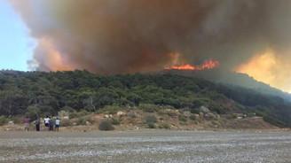 Pakdemirli, Antalya'daki yangınla ilgili açıklama yaptı