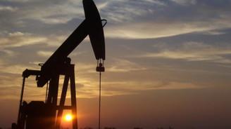 Petrolde yüksek seyir devam ediyor