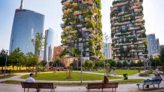 Mimaride yeni yaklaşım: Ağacın izinde yeşil yapılaşma